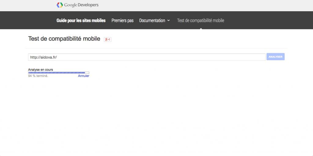 Test de compatibilité mobile de Google